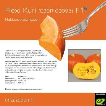Leaflet Hakkoïdo pompoen E30R.00095 F1