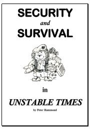 Security And Survival in Unstable Times