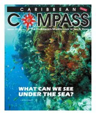 UNDER THE SEA? - Caribbean Compass