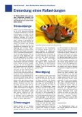 Infoblatt des Kinderhilfswerks Casa Girasol in Mittelamerika - November 2012 - Page 4