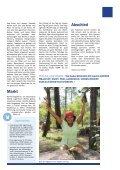 Infoblatt des Kinderhilfswerks Casa Girasol in Mittelamerika - November 2012 - Page 7