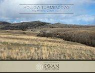 Hollow Top Meadows Offering Brochure 4-21-2020