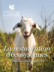 le magazine CNC - printemps 2020