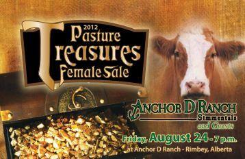 Pasture - Anchor D Ranch