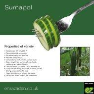 Leaflet Sumapol 2020