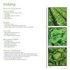Brochure Iceberg Australia 2020 - Page 5