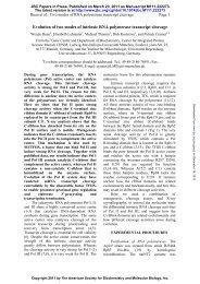 Evolution of two modes of intrinsic RNA polymerase transcript ...