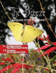 The Breeze May 2020
