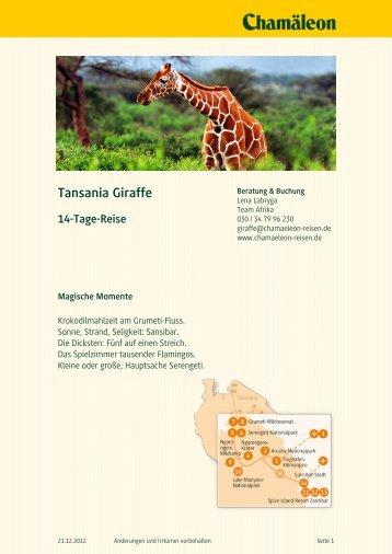 Tansania Giraffe 14-Tage-Reise - Chamäleon Reisen GmbH