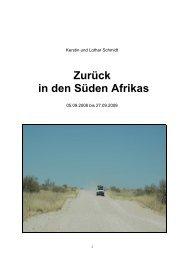 Zurück in den Süden Afrikas - Auslandserfahrungen.de