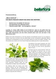 DIE BESTE MEDIZIN GEGEN DAS GRAU DES WINTERS - Bellaflora