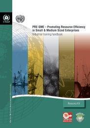 PRE-SME – Promoting Resource Efficiency in Small & Medium ...