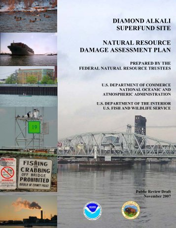 DIAMOND ALKALI SUPERFUND SITE NATURAL RESOURCE ...