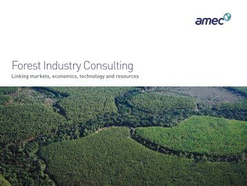 Forest industry consulting brochure - Amec