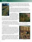products - Prairie Restorations, Inc. - Page 6