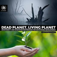 Dead planet, living planet: Biodiversity and ecosystem - UNEP