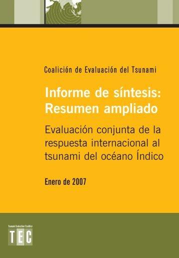 Informe de síntesis: Resumen ampliado - alnap