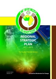 REGIONAL STRATEGIC PLAN RFV in English - Strategic Planning ...