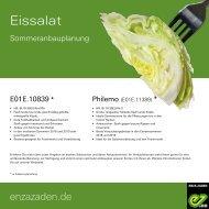 Leaflet Eissalat 2020