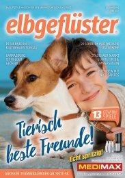 Elbgefluester 06_2020 online