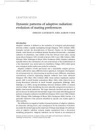 Dynamic patterns of adaptive radiation - The Institute for ...