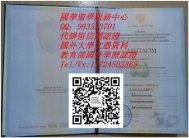 俄罗斯人民友谊大学文凭样本People's Friendship University of Russia QV993533701俄罗斯大学毕业证成绩单Offer