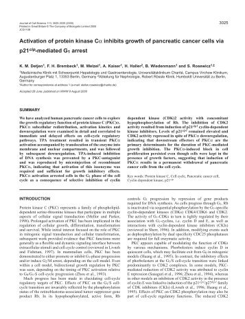 PKC(alpha) inhibits CDK2 activity via p21cip1 - Journal of Cell ...