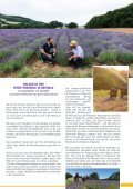 Der Augustdorfer: Petite Provence - Seite 5