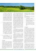 Fe, esperanza y desintoxicación - Page 3