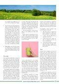 Faith, Hope, and Detoxification - Page 3