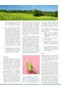 Tro, håb og afgiftning - Page 3