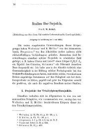 Studien über Perjodide.