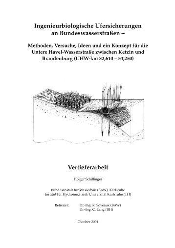 Vertieferarbeit - Alternative technisch-biologische Ufersicherungen ...