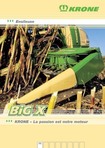 2009 BiG X FR