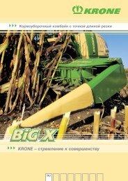 2009 BiG X RU