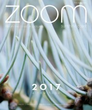 ZOOM | New Year 2017