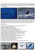 Blue whale Camp Pico, Acores 2012 - Wirodive - Seite 2