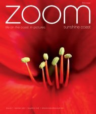 ZOOM | New Year 2016
