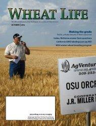W A S HIN G T O NG R A IN C O MM IS S IO N - Wheat Life