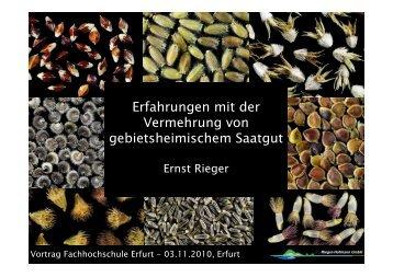 Erfahrungen mit der Vermehrung von gebietsheimischem Saatgut