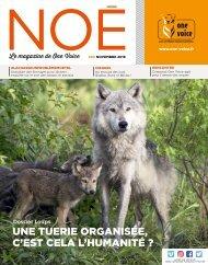 Noé 96