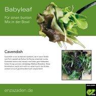 Leaflet Babyleaf 2020