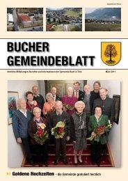 Gesamtzusammenstellung Gesamthaushalt - Buch in Tirol - Land Tirol