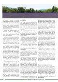 Fe, estrés y amor  - Page 2