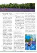 Fe, estrés y amor  - Page 3