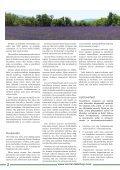 Usko, stressi ja rakkaus - Page 2