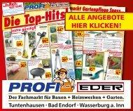 Profimarkt_Content Ad_Mobile_Top Hits_ab_11_08_20