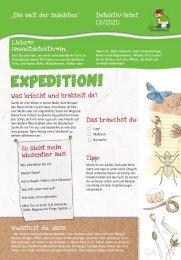 Umweltdetektive: Die Welt der Insekten