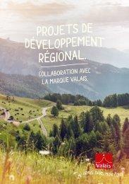 Projet de développement régional