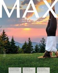 MAX#4: Psychosomatik, Führungsmanagement, DFL Stiftung